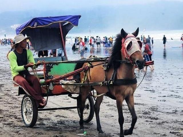 Tempat Wisata Pangandaran Bandung