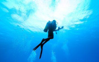 0812 9393 9797 Pangandaran Scuba Diving (30 Mnt) Taman Laut