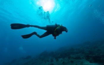 0812 9393 9797 Pangandaran Scuba Diving (60 Mnt) Nusa Kambangan
